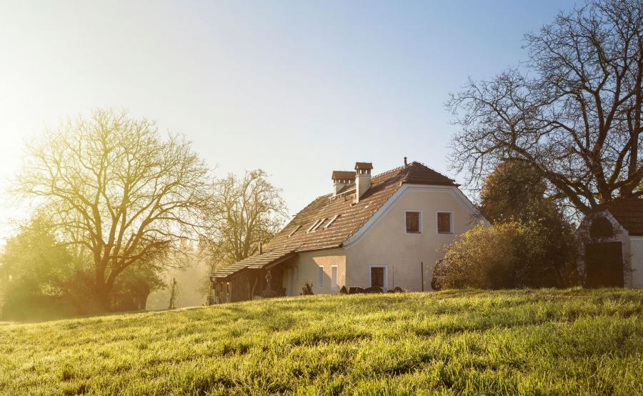 Dom na działce wśród drzew