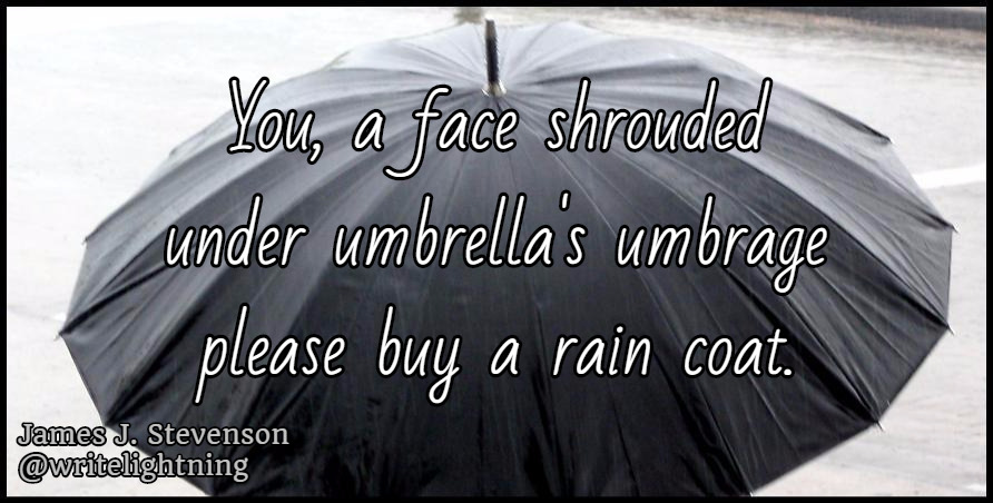 "Umbrellas are not useful in light rain and wind. PLEASE buy a rain coat instead.Another ""missed connection"" haiku. I'll be selling my books (two volumes!) at Vancouver Comic Con tomorrow! I'm even a special guest :Dhttp://www.vancouvercomiccon.com/ Prefer Twitter, Facebook, or Pinterest ? Follow my haiku and poetry there!"