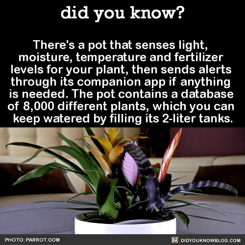 There's a pot that senses light, moisture, temperature and fertilizer levels for your plant, then sends alerts through its companion app if anything is needed. The pot contains a database of 8,000 different plants, which you can keep watered by filling its 2-liter tanks. Source