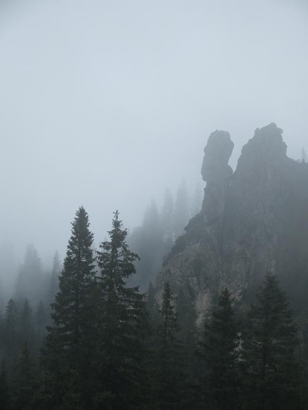 mangia minga // Kampenwand im Nebel - a foggy, rainy day in the Chiemgauer Alpen