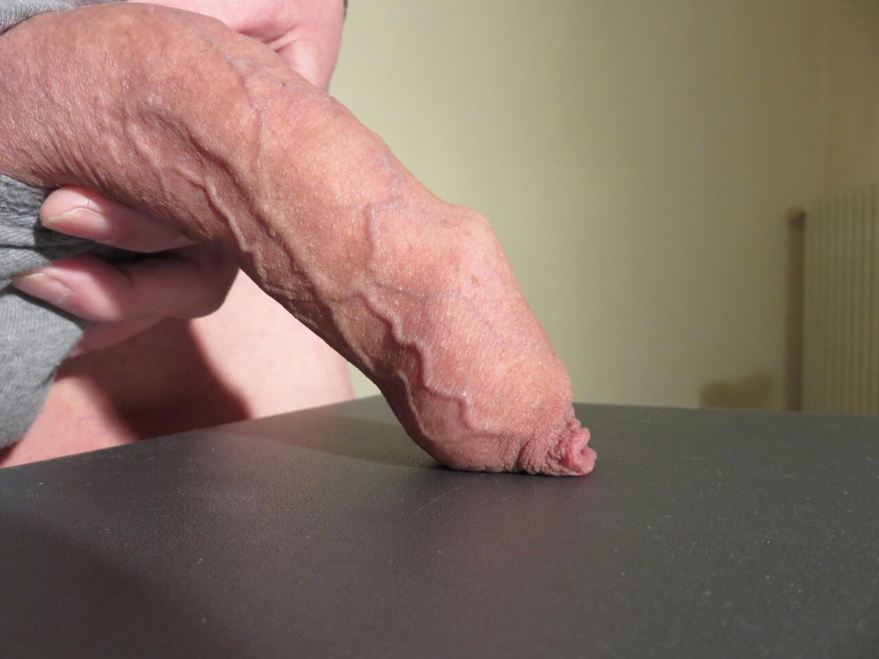 Foreskin Hung Amateurs