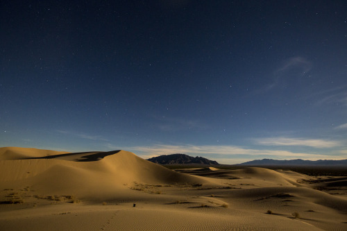 Cadiz Dunes Wilderness, California, by Bob Wick
