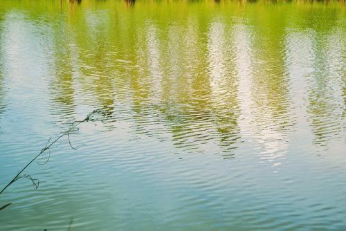 Água. on Flickr.Água.