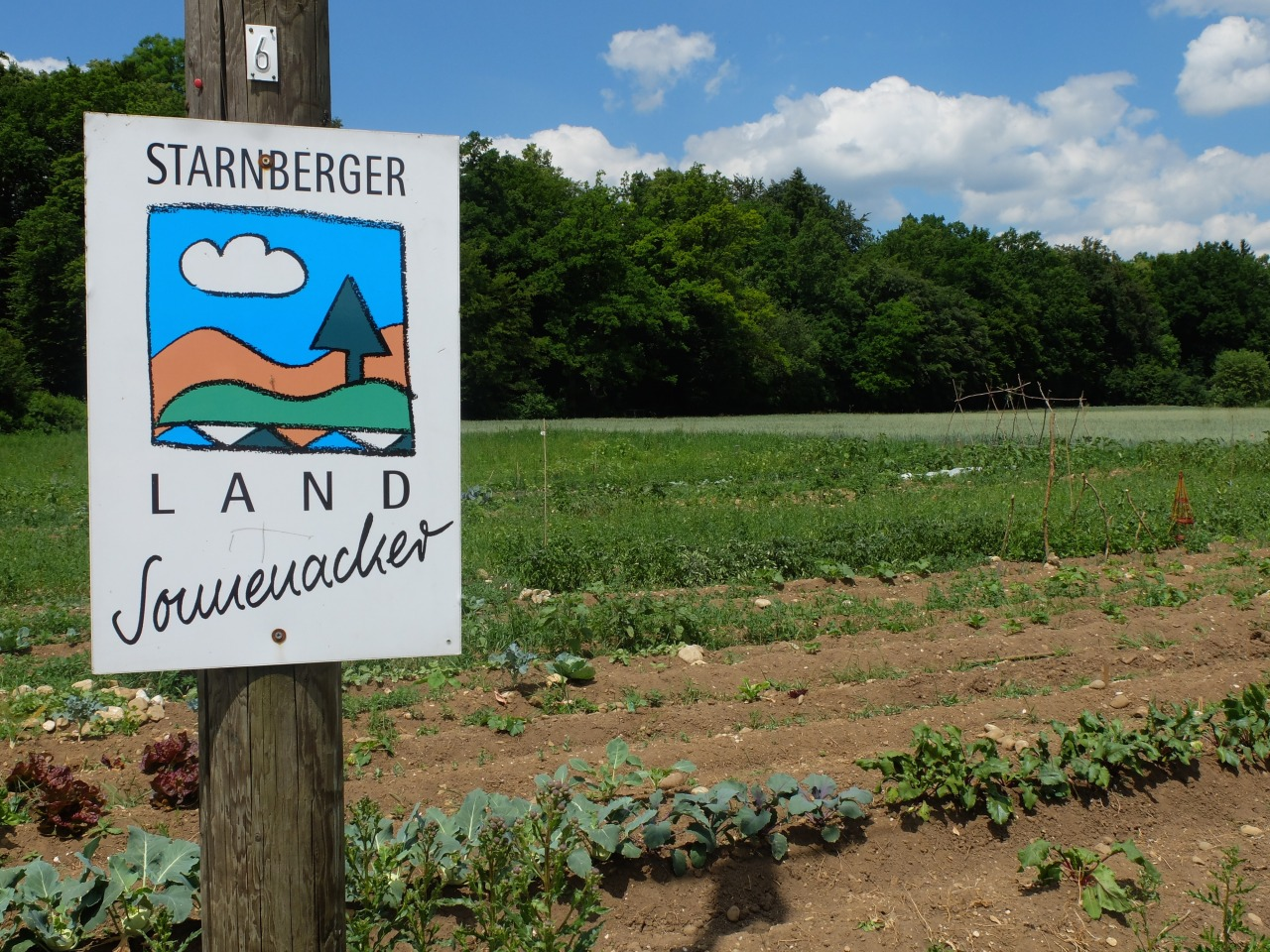 mangia minga - Unser Land Sonnenacker: rent a vegetable garden