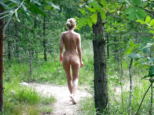 Nude in the woods. Bliss.