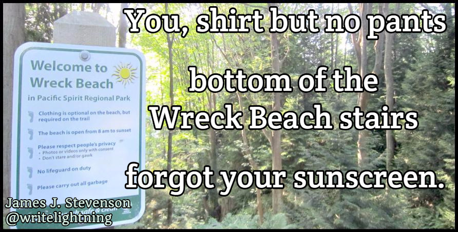 "The worst place to get a sunburn is a nude beach.This is a poem from a book I just made! It's a collection of ""missed connection"" inspired haiku about all the diverse people who live in Vancouver: the city I love. Prefer Twitter, Facebook, or Pinterest ? Follow my haiku and poetry there!"