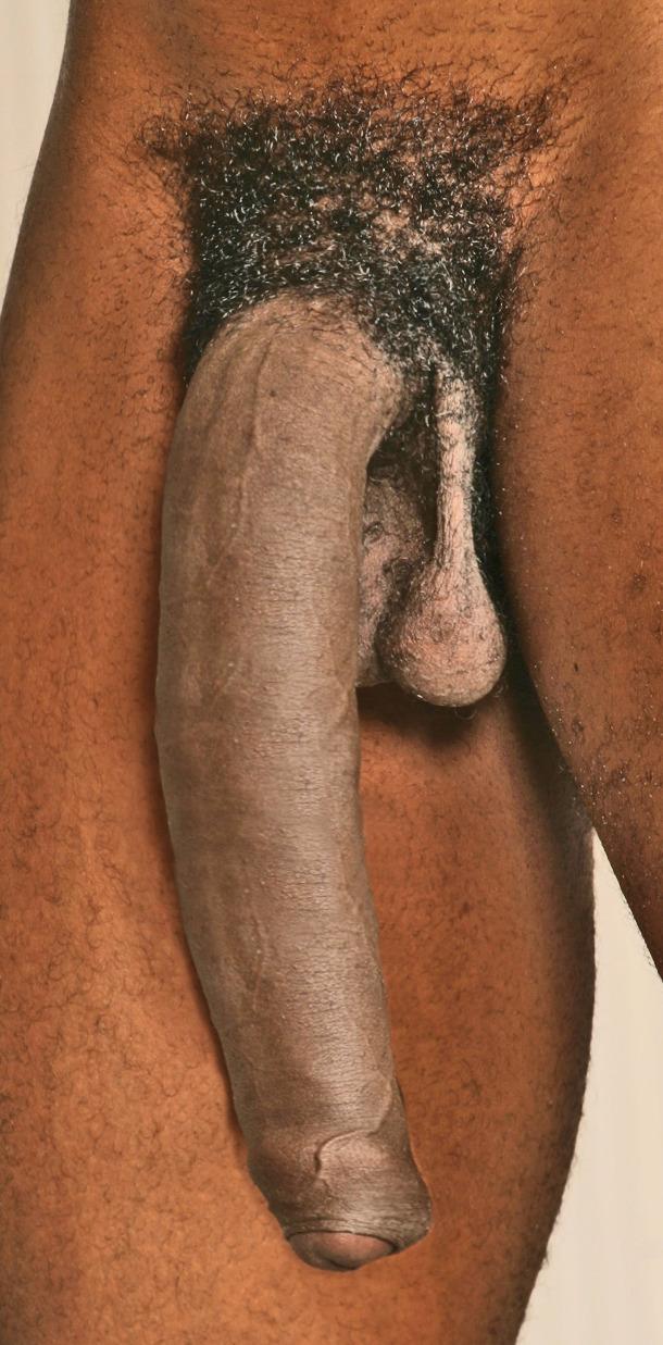 Big dick tumbl