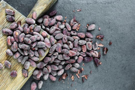 Chocolate Tasting - Cocoa Runners