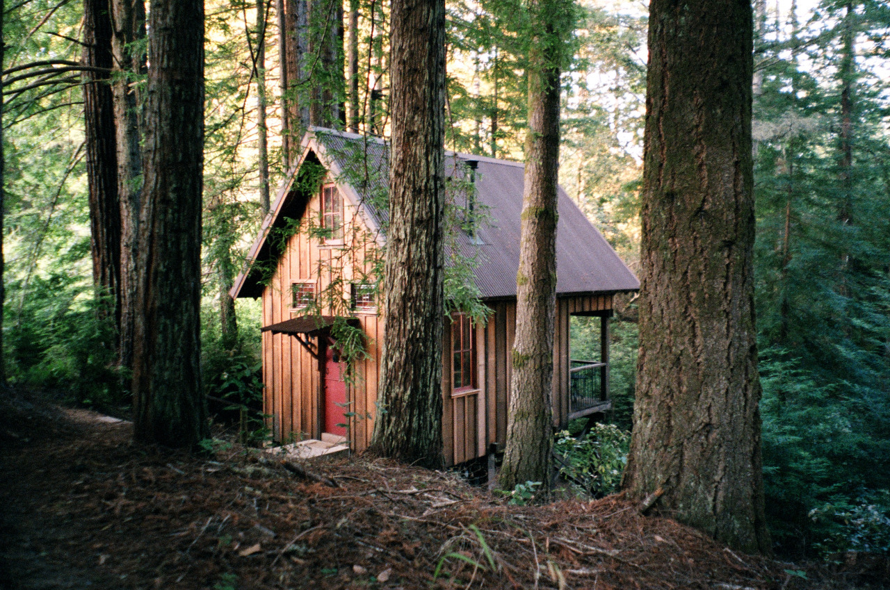 Owl Tree cabin in Albion, California.Available for rent.Contributed by Jez Burrows.