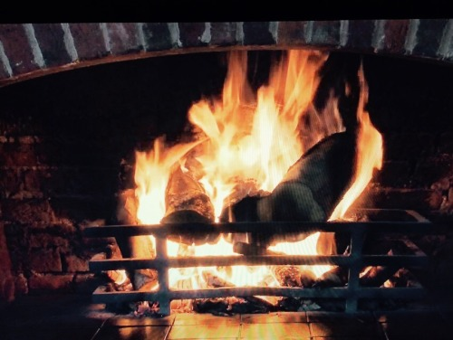 One Happy Thing #8: The Yule Log Channel I heard this now is broadcast more nationally, but the first time I ever heard about a channel that spent 24 hours just showing a flickering fire was in 2006 when CT friends were reliving some of their best Childhood memories. I had never heard such I thing, but since then I've tuned into the channel around Christmas time over the years. There's nothing as lovely as curling up next to a fire while it snows outside… but curling up next to your tv showing a flickering fire while it snows outside is a close second.