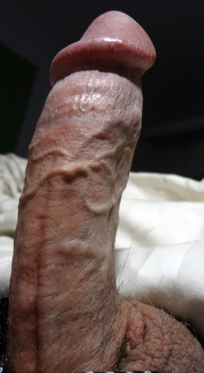 """""""HOT DADDY COCK OF THE DAY!"""" MORE CLICK HERE: DADDYFOLLOW HOT..."""