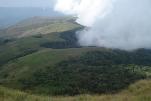 Chappal Waddiis a mountain in Nigeriaand, at 2,419 meters, is the country's highest point. It is located in Taraba State, near the border with Cameroon, in the Gashaka Forest Reserve.