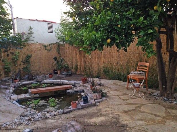 pond & lower patio