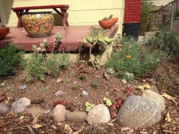 succulent porch planters