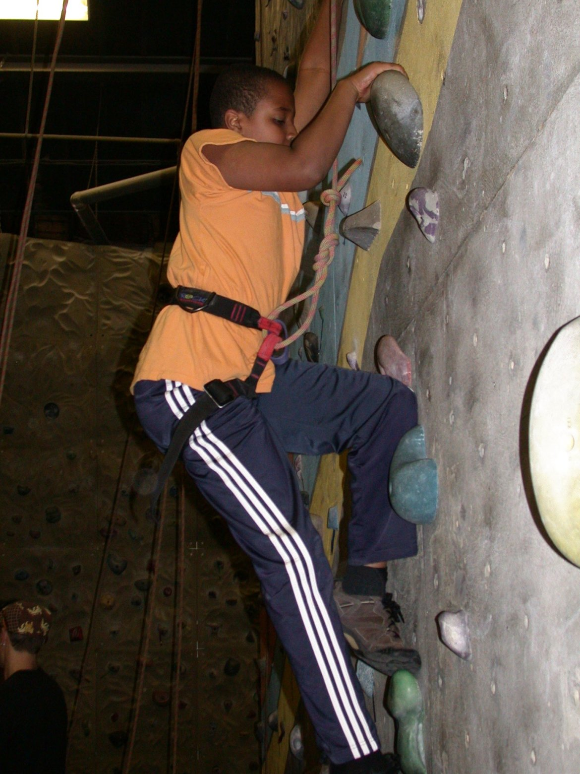 Scouts' climbing night a great success
