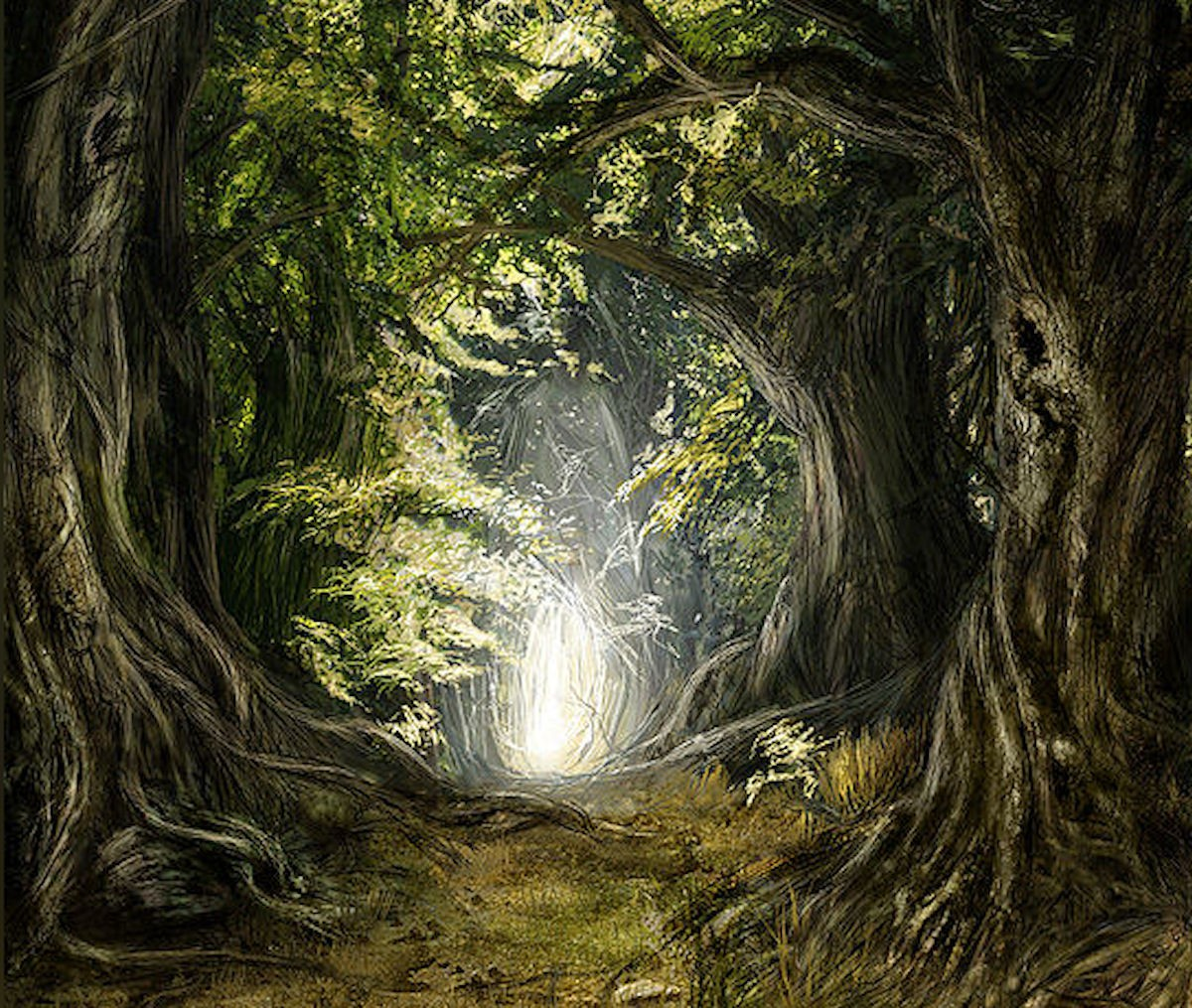 old magic tree beautiful fairy alley surreal forest fantasy tale