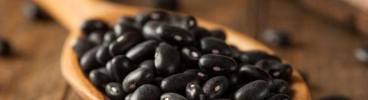 Schwarze Bohnen mit viel Eiweiß