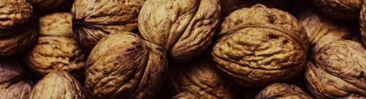 Wallnüsse mit viel Eiweiß
