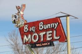 Big Bunny Motel, Barbara Gal