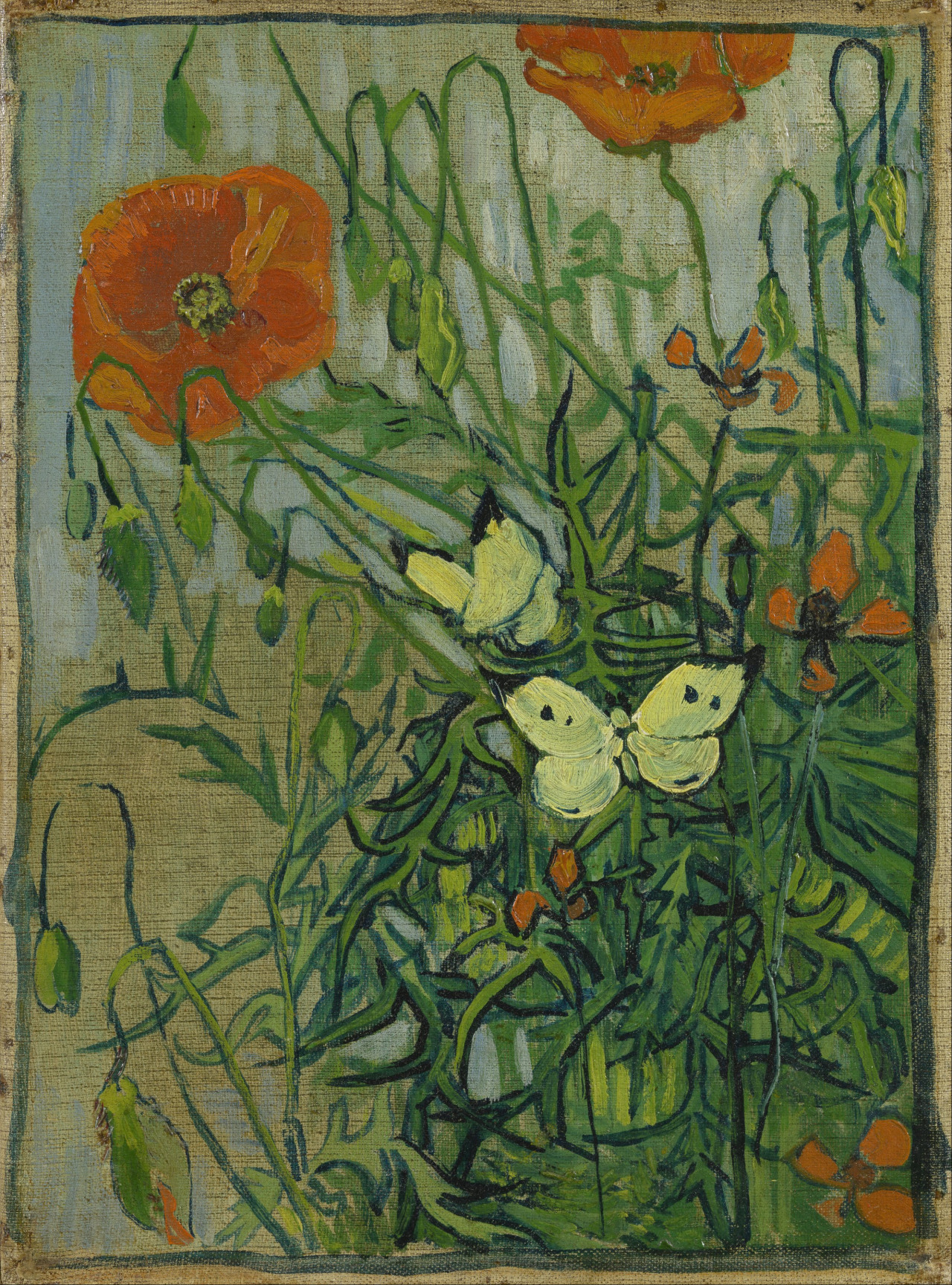 herzogtum-sachsen-weissenfels:  Vincent van Gogh (Dutch, 1853-1890), Poppies and Butterflies, 1890. Oil on canvas, 34.5 x 25.5 cm.