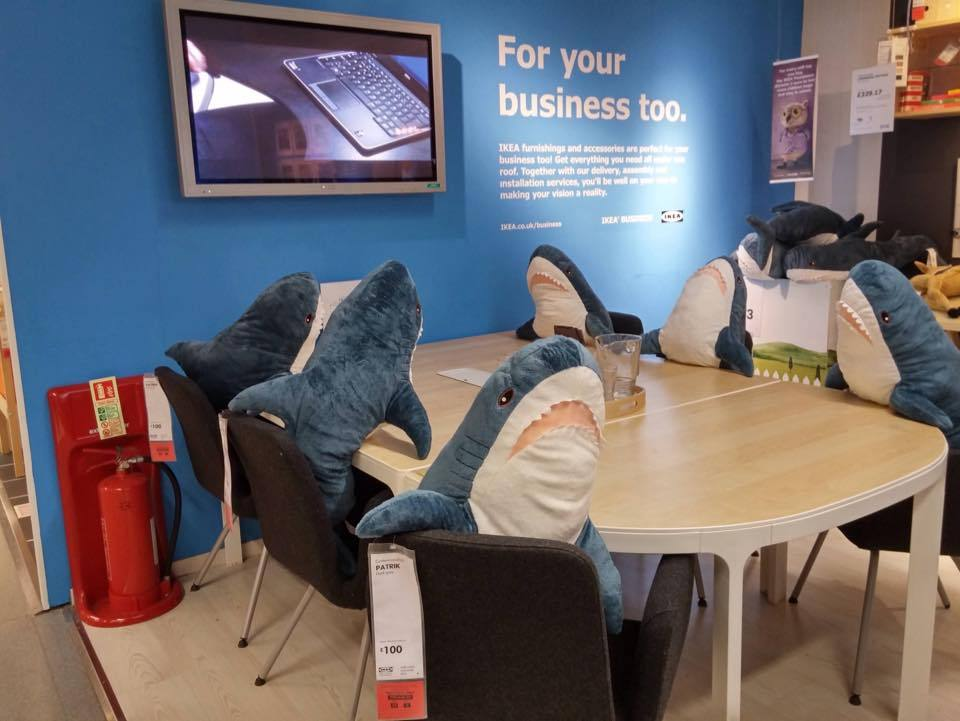 Six plush sharks sit around a boardroom meeting table at Ikea.  They're discussing serious shark business.