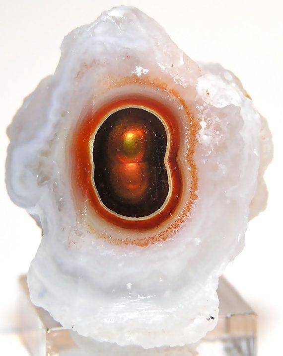 earthstory:  Quartz with a fiery heartLooking like a doorway into another dimension, this wonderful crystal of quartz held a secret within. The dark orange brown agate in the centre is surrounded by haloes of iron oxide minerals, probably haematite (see http://tinyurl.com/nngtpnh), and displays the iridescent 3d optical effect known as fire agate, discussed previously at http://tinyurl.com/kxfh644.LozImage credit: Fender Minerals