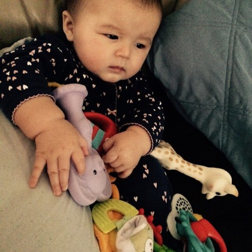 Emma needs all her friends with her in order to get through teething this morning.