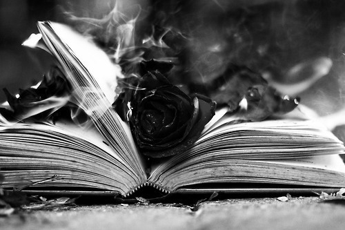 THE BOOKPlease take a closer look.Something's wrong with this book.The words have come alive.Breaking free to survive.They are bursting forth with pride.Smoke is pouring out from inside.Words need to be loved and sharedAnd not forced alone and scared.Let the stories come out and play.They will serve to brighten your day.