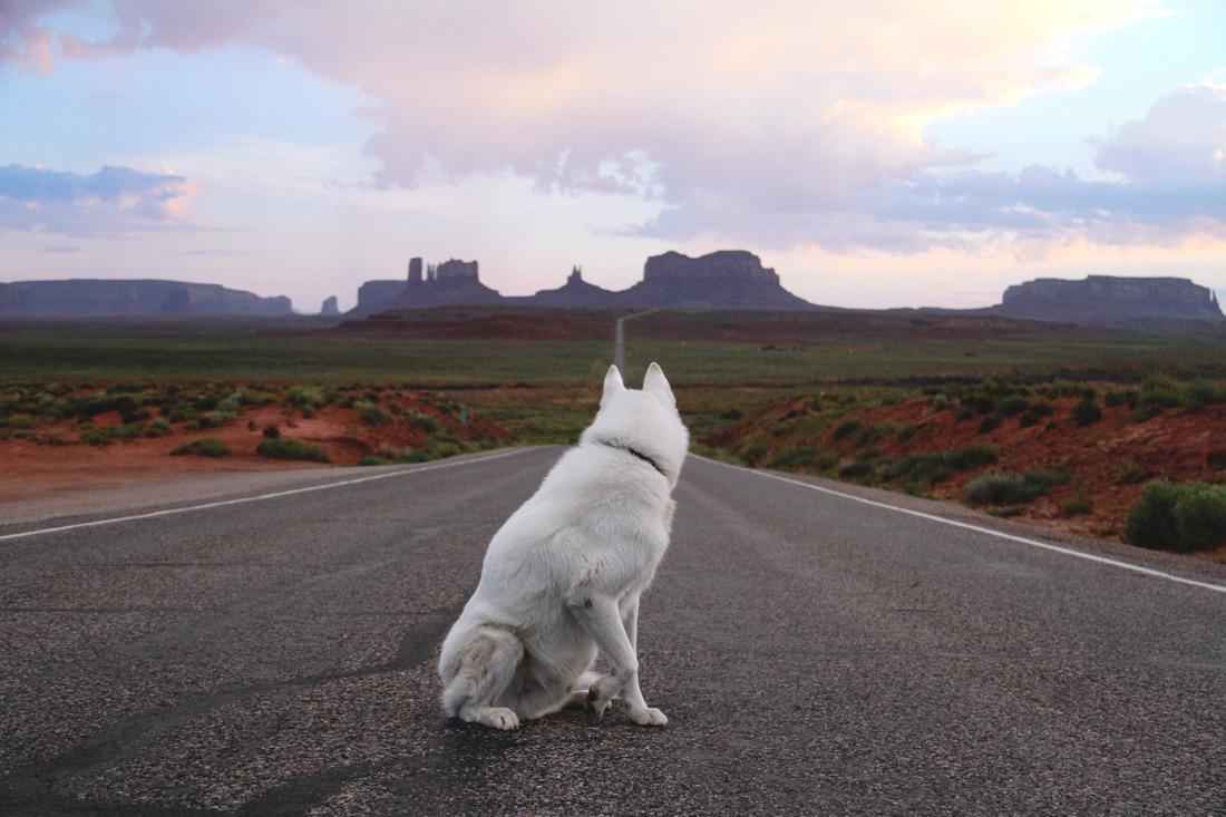 Monument Valley, UT / August 2015