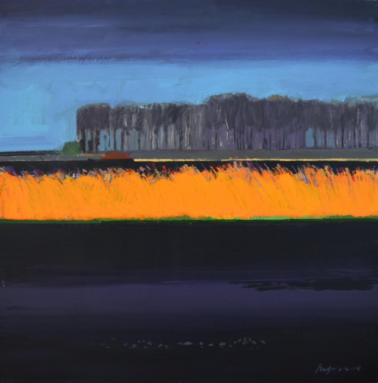 group-eight:Orange Reeds in the Black FensFred Ingramshttp://www.fredingrams.com/