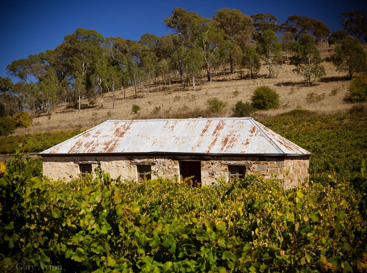 Sth Australia Road Trip Clare Valley And Then The