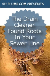 The Drain Cleaner Found Roots In Your Sewer Line