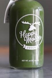 happy moose closeup