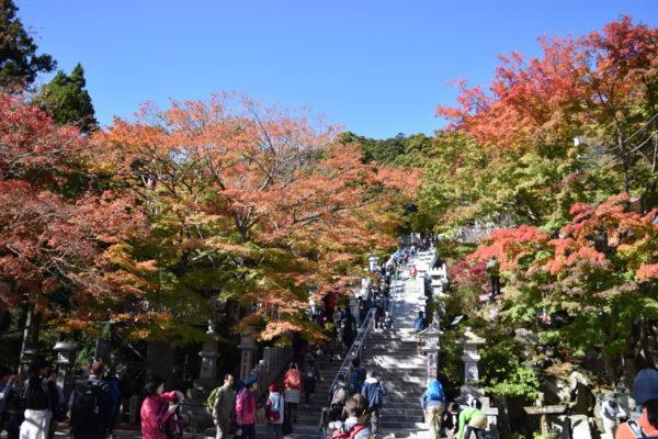 大山のロープウェーをおりた場所にある阿夫利神社