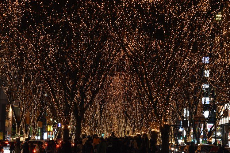 2017年の12月の仙台ひかりのページェント