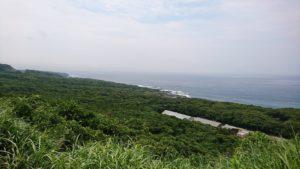伊豆大島は緑豊かな島です