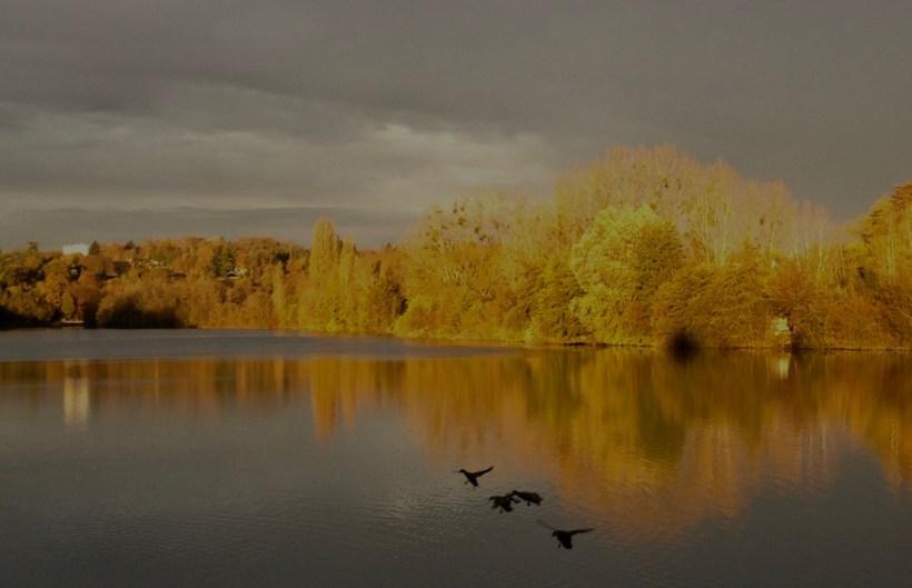 La Seine à l'automne