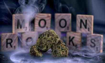 Moon Rocks Marijuana Review – Lunar Landing