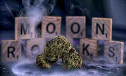 Moon Rocks Marijuana Review – Lunar Landing