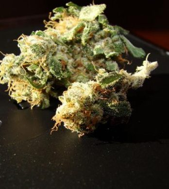 Buy 98 Aloha White Widow online-weed shop online worldwide