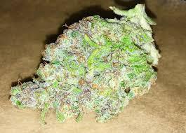 Buy hindu kush online-hindu kush for sale-Order Marijuana Online USA