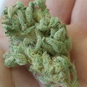 Buy Bubba Kush online-bubba kush for sale-medical cannabis illinois