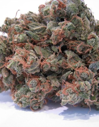 Buy purple urkle kush online