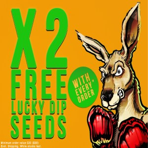 Free Lucky Dip Seeds Bonza Seeds Coupon Code