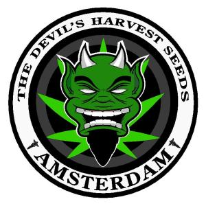 Devil's Harvest Cannabis Seeds Seed City Coupon Code