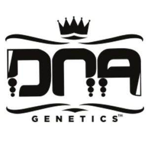 DNA Genetics Seedsman Promo