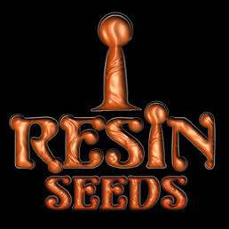 Resin Seeds Seedsman Special