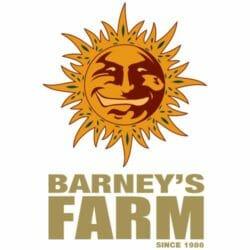 Barney's Farm Seed City Coupon Code