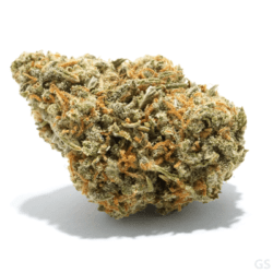 Grandaddy Blueberry Medical Marijuana Green Society Coupon Code