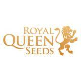 Royal Queen Seeds Seed City Coupon Code